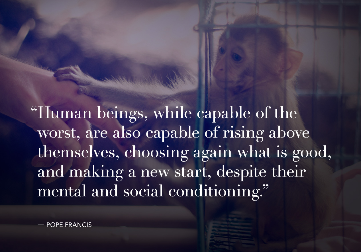 pope-francis-quote-8